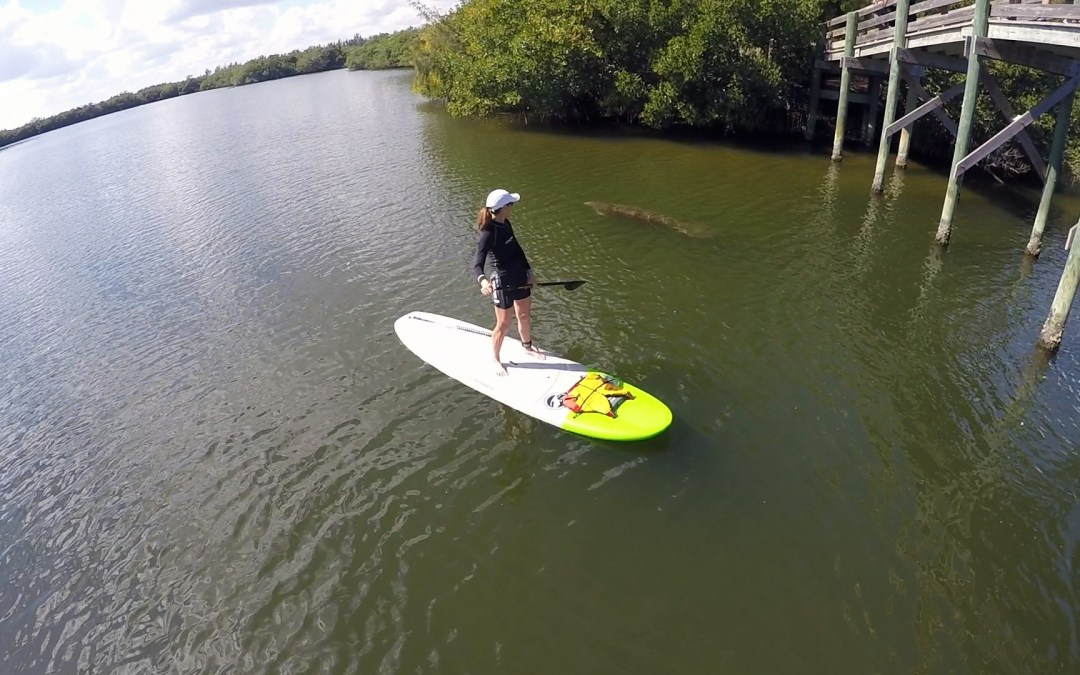 Where to Kayak and Paddle Board in Vero Beach