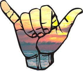 Si lo veis irse, paddle surf blog noticias