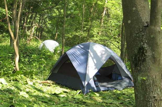 Guerrilla camping campsite