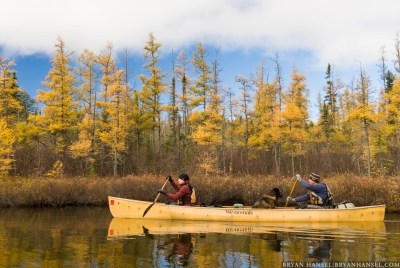 Dave and Amy Freeman paddling past fall colors in the BWCA