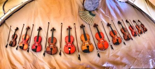 Violin Workshops For Schools