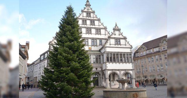 Weihnachtsbaum auf dem Rathausplatz Paderborn 2017
