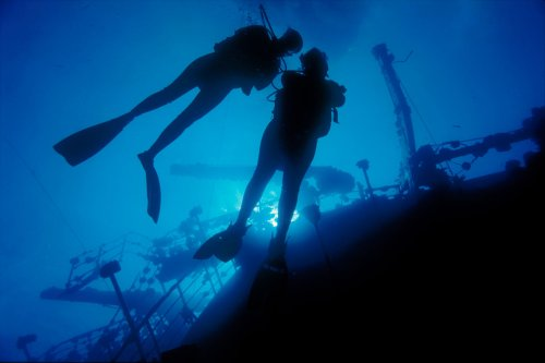 Image result for padi wreck