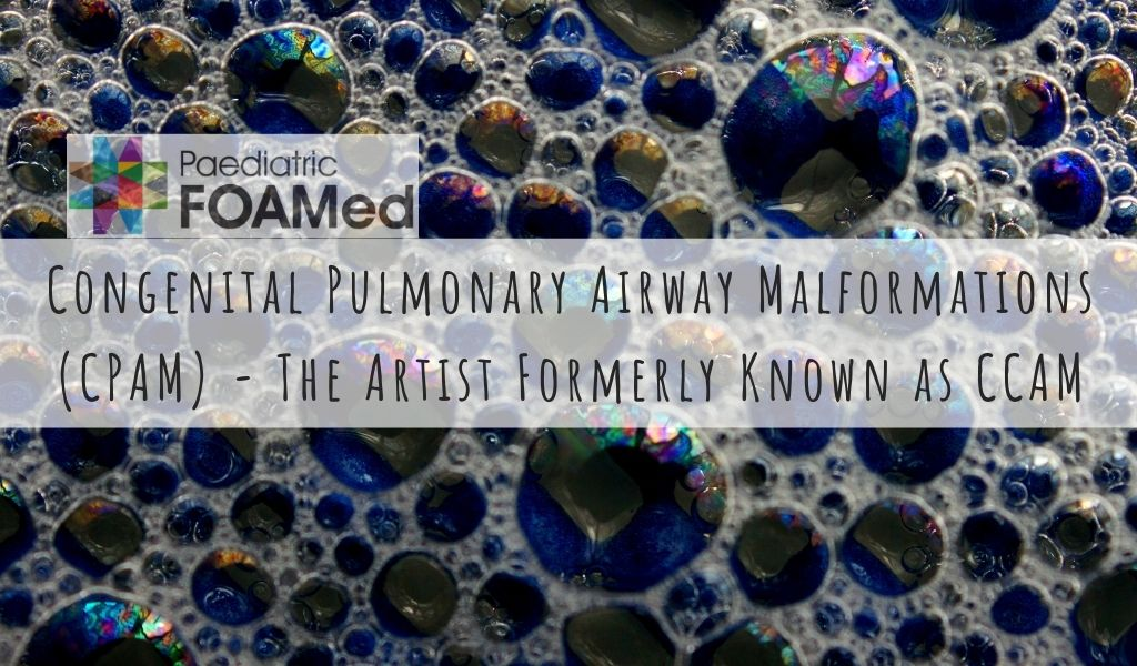 Congenital Pulmonary Airway Malformations (CPAM) – the abnormality formerly known as CCAM.