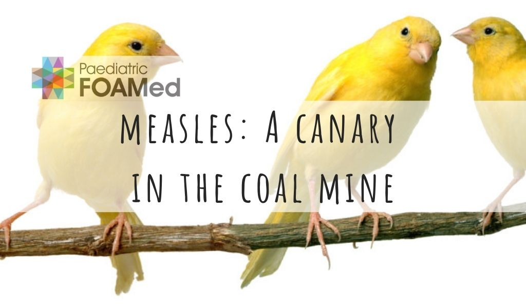 Measles: a Canary in the Coal Mine