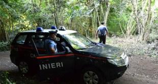 Vairano Patenora / Roccamonfina – Furto di legna, imprenditore vairanese sotto processo