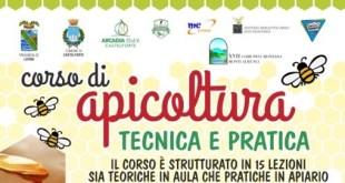 Castelforte – Corso tecnico di apicoltura per cercare di salvare l'estinzione