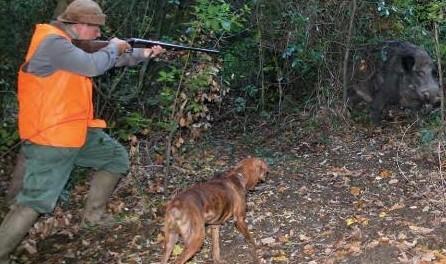 incidente-caccia