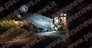 Marzano Appio – Cinghiali sulla provinciale, auto fuori strada: miracolata nipote ex sindaco