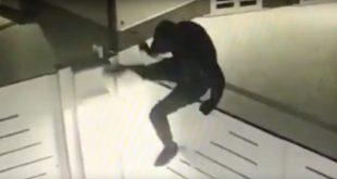 Pignataro Maggiore – Ladri in azione in via Degli Ulivi, malviventi messi in fuga da una cittadina