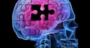 ROCCAMONFINA – Screening cognitivo, conclusa con successo la giornata della prevenzione delle malattie neurodegenerative