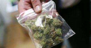 MONDRAGONE – Detenzione ai fini di spaccio di sostanze stupefacenti, arrestato pregiudicato