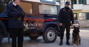 Vairano Patenora / Caianello – Spaccio di droga, blitz dei carabinieri nel centro immigrati