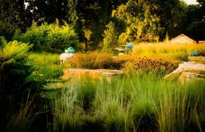 Delano Park Summer 2011 088