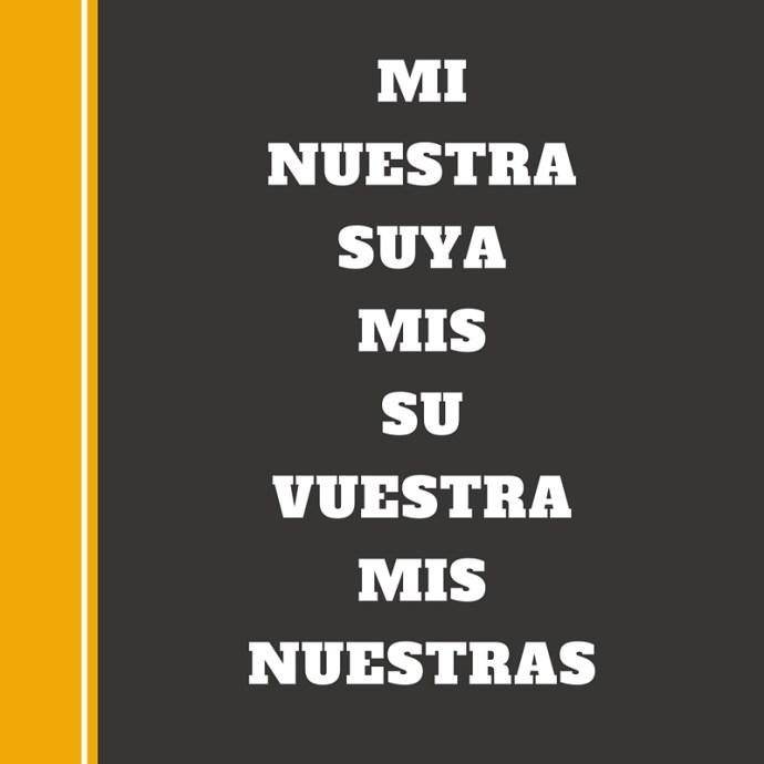 una actividad con los posesivos la página del español
