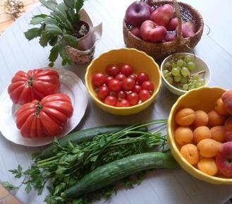 refranes sobre la vida sana