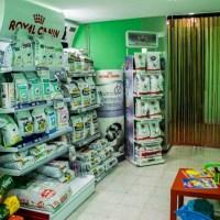 veterinario las canteras – paginascanarias