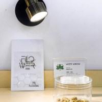 white weed – las palmas de gran canaria