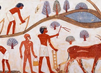 Agricultural Scenes, Tomb of Nakht