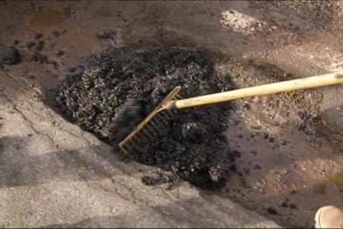 Pothole Patching_2703125500216624960