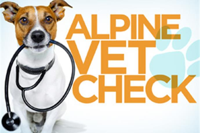 PA Live! Vet Check_ June 28_6910944104489306442