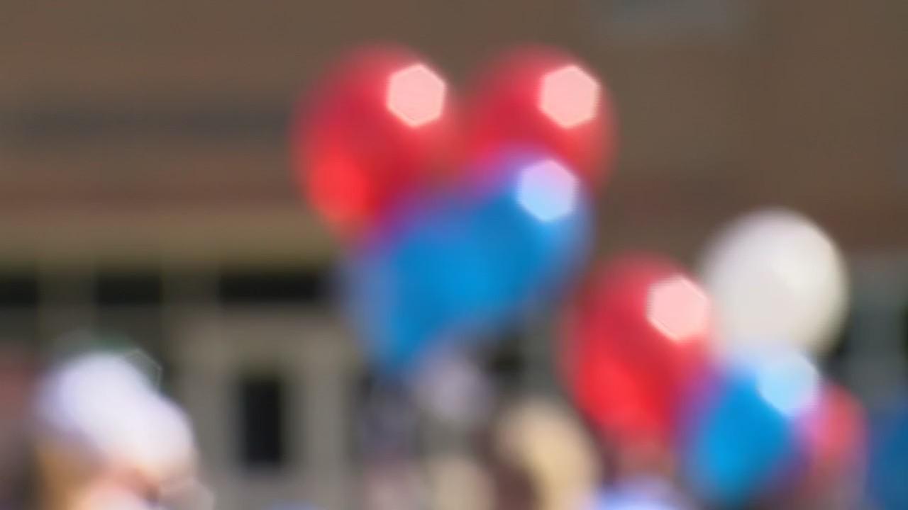 Balloon_Protest_0_20190527161713