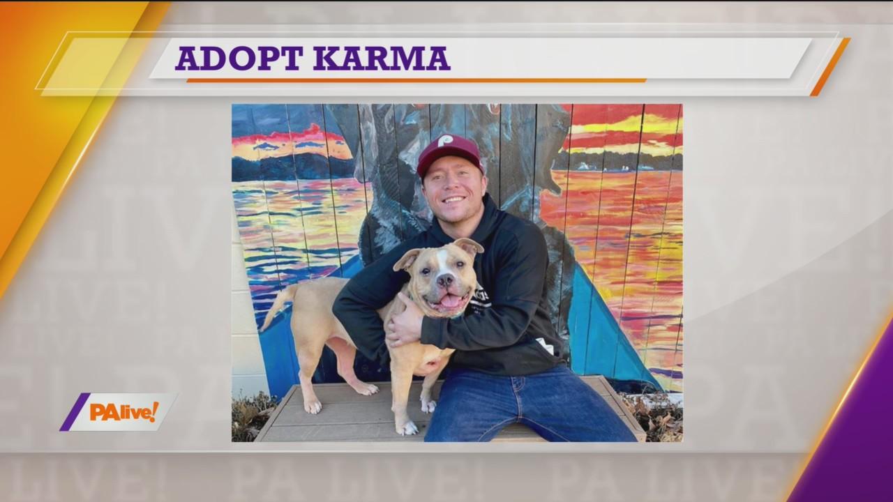PAlive! SPCA Feature Pet January 23, 2020