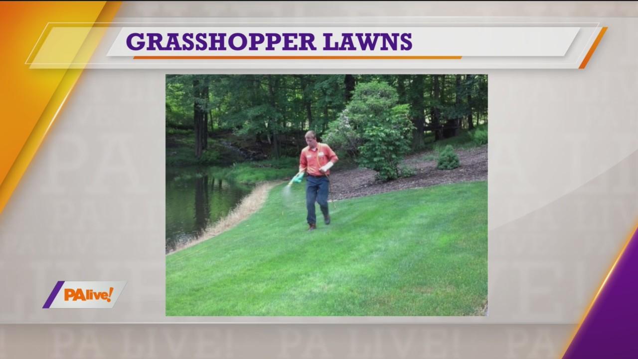 PAlive! Grasshopper Lawns March 30, 2020