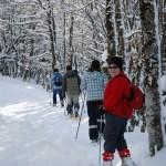 Location de ski de fond et raquettes Pailherols