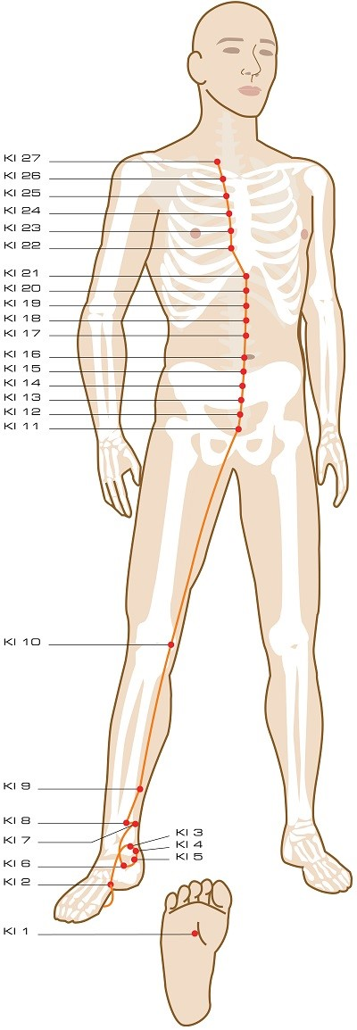 Pain Relief, Reflexology & Acupressure | Acupressure Therapy