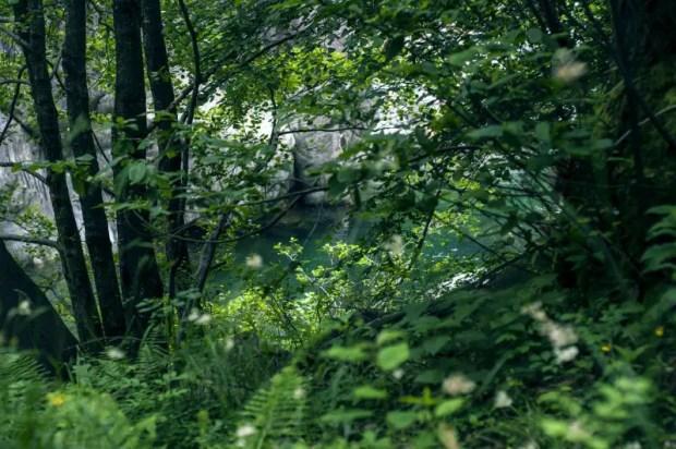torrente san bernardino sentiero