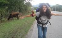 Sara e mucche nella terra di nessuno