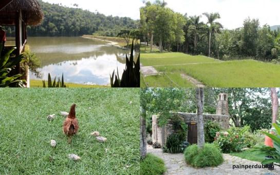 Images of Las Terrazas