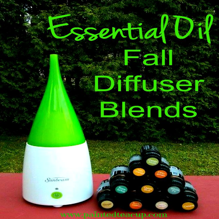Essential Oil Fall Diffuser Blends. www.paintedteacup.com