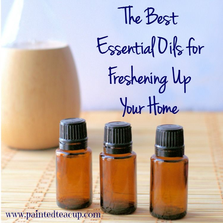 Learn about the best essential oils for freshening up your home! These 5 essential oils will leave your home smelling fresh and clean!