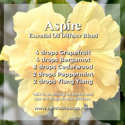 Aspire Diffuser Blend -Wonderful bergamot diffuser blends to inspire joy and hope. These recipes combine bergamot essential oil with other essential oils to help lift your mood! #diffuserblends #essentialoils #bergamot #bergamotessentialoil #diffuserrecipe