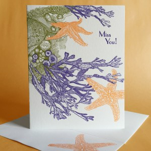 Rockweed Greeting Card by Painted Tongue Press