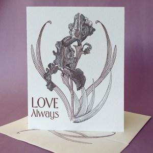 Black Iris Love Always