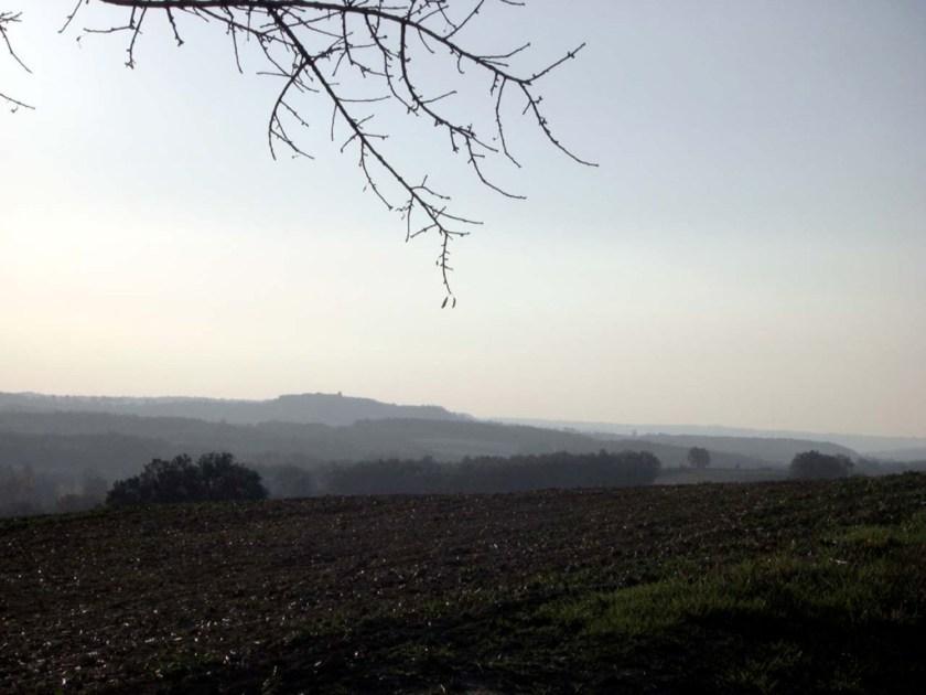 Castelnau de Montmiral in far distance