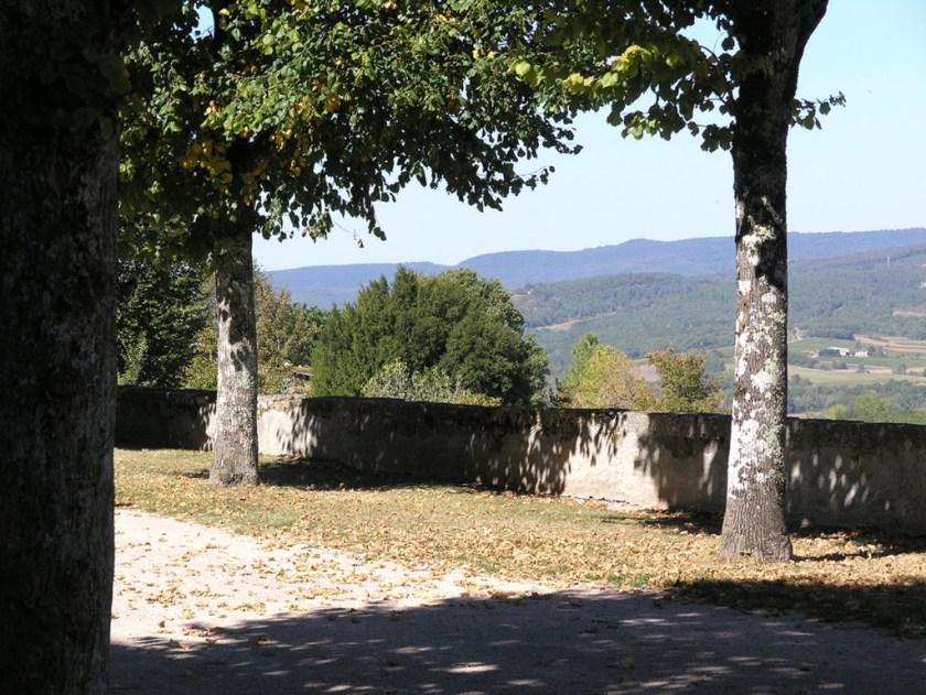Trees-on-esplanade-with-gresigne