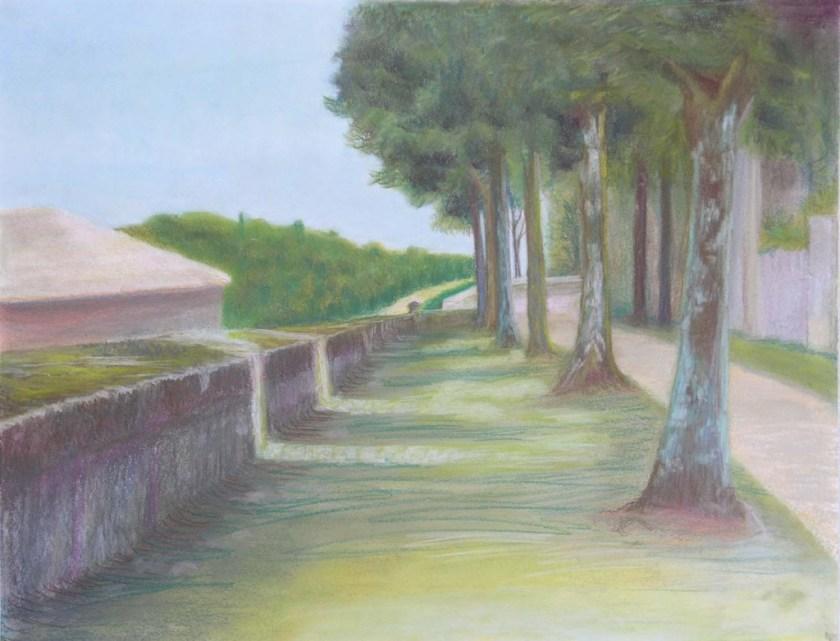 Kate esplanade trees and long wall