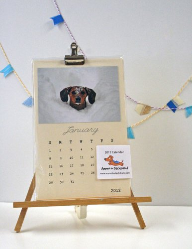 2012 ammo the dachshund calendar