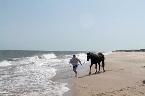 cape henlopen beach ride - painting pony