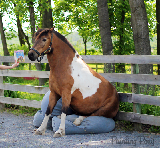 Painting Pony heads to Pony Penning 2013 // Misty of Chincoteague