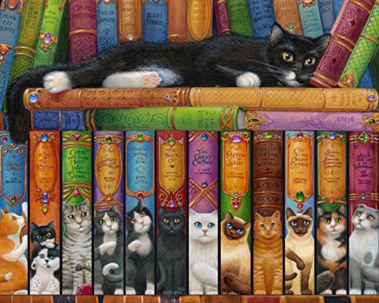 Image result for books cats