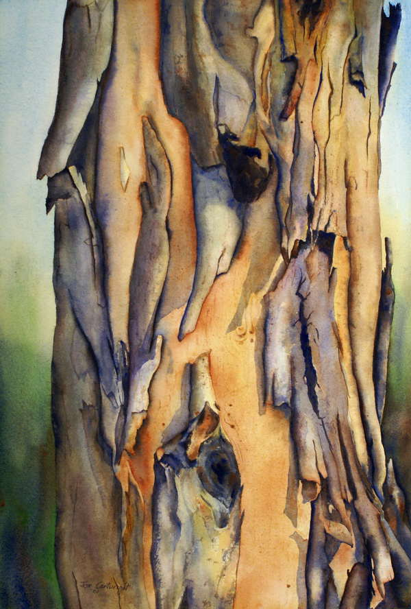 Oil Color For Painting Driftwood