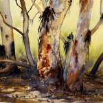 River Red Gums Flinders Ranges watercolor painting. Yellow background and reds and other warm colors on bark.