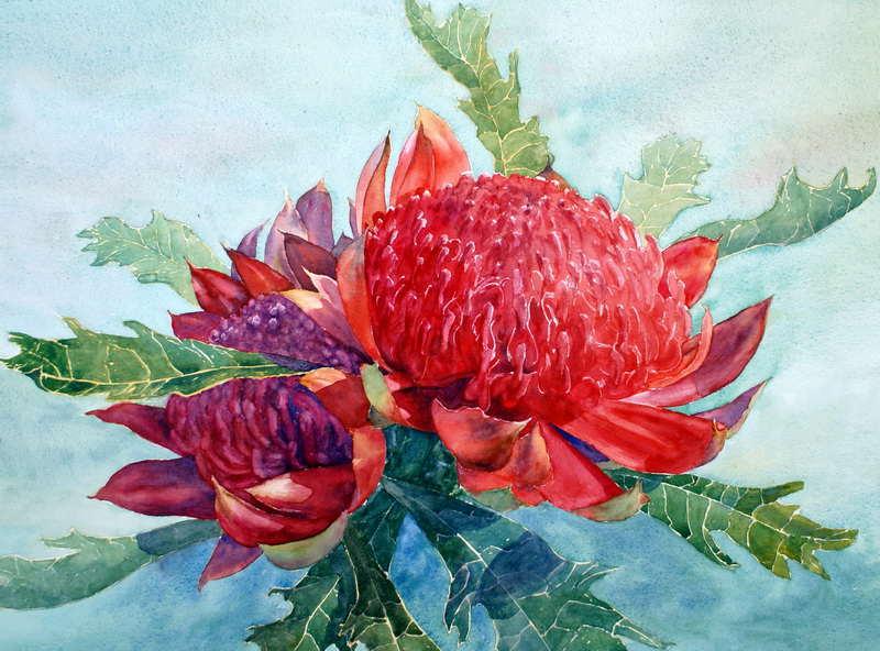 Watercolor Paintings Flowers Gallery Watercolour Flowers