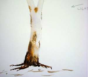 Finishing the trunk of the eucalyptus tree with watercolor paint