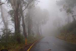 Rain fog and mist reference photo Mt Hotham for watercolor painting